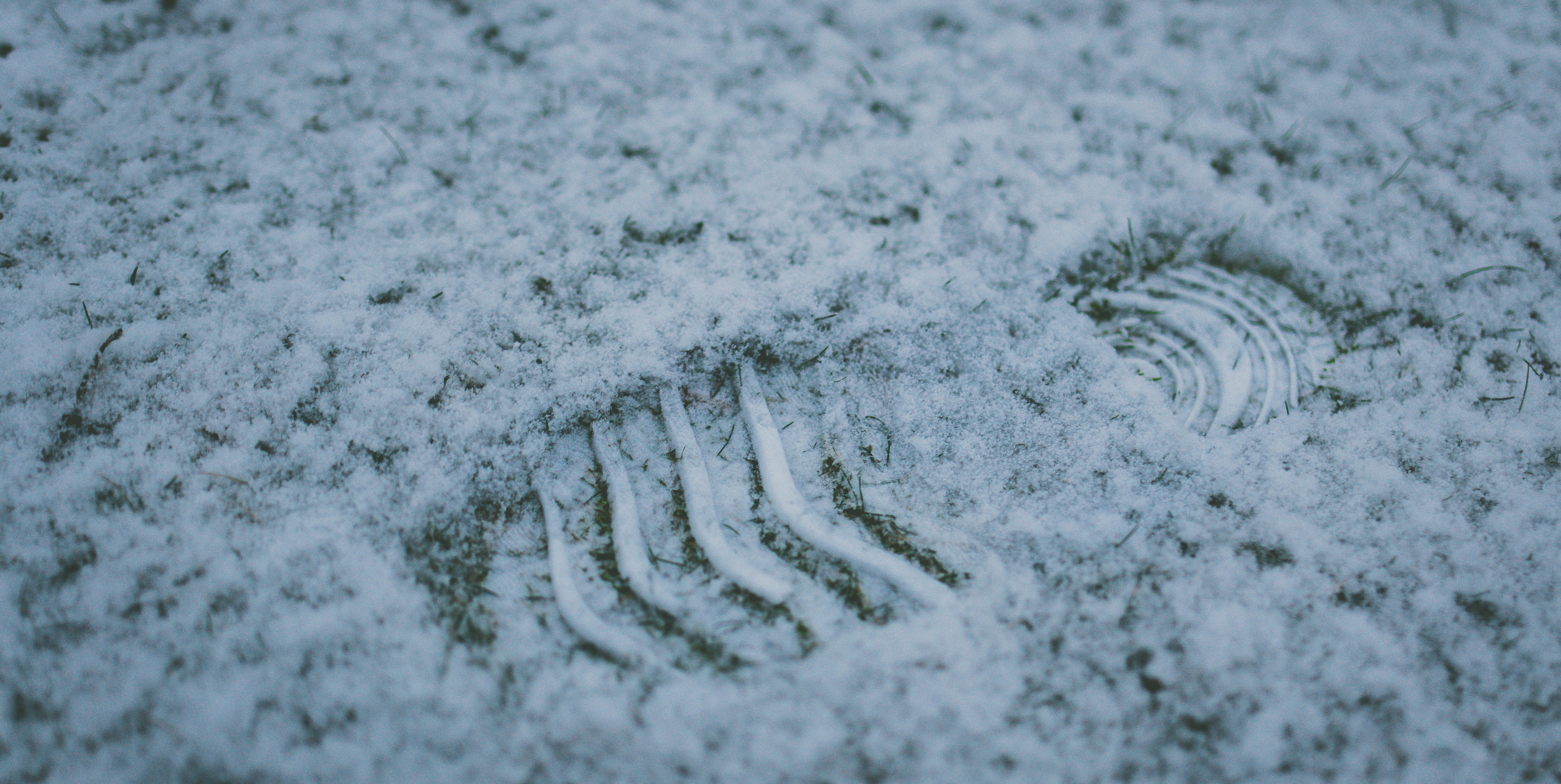 Photo of a footprint in the white snow