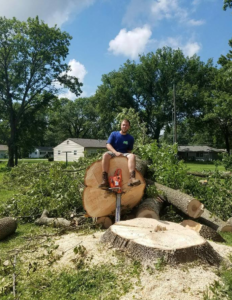 professional-tree-removal